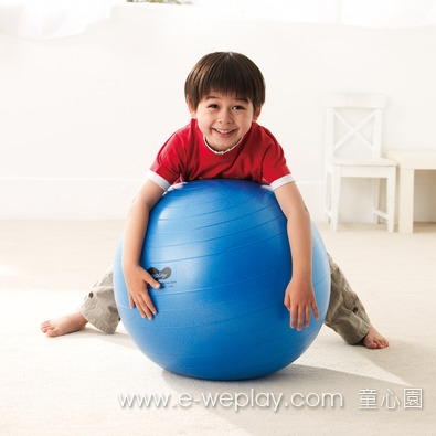 Weplay防爆球 - 65cm