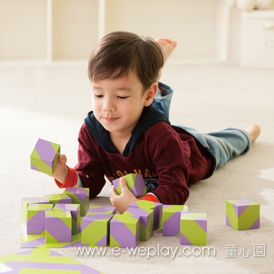 Weplay夢幻森林積木 - 16塊
